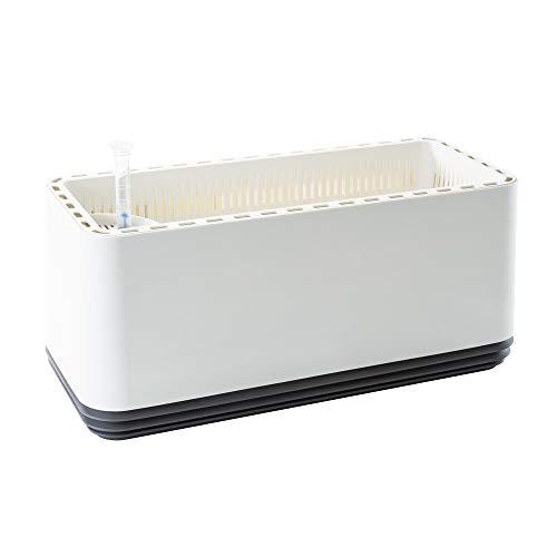AIRY Box - Natürlicher Luftreiniger für Allergiker - Patentierter Pflanztopf als Filter gegen Schadstoffe, Haus-Staub, Pollen, Geruch, Allergie (grau, Gen. 1)