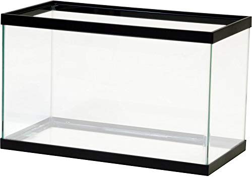 Emplty 10 Gallon Tank with Lid