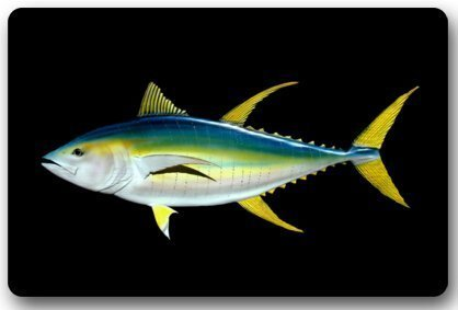 GDESFR - Felpudo de Neopreno Antideslizante, diseño de pez atún Azul
