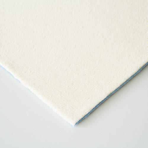 Steffensmeier Velours Teppichboden Verona Meterware | Auslegware für Kinderzimmer Wohnzimmer Schlafzimmer | Creme, Größe: 100x800 cm