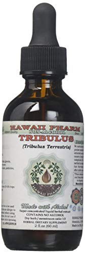 Tribulus Alcohol-FREE Liquid Extract, Tribulus (Tribulus Terrestris) Dried Fruit Glycerite Natural Herbal Supplement, Hawaii Pharm, USA 2 fl.oz