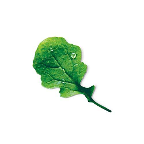 Kräuter-Samekapseln für Plantui 6 Smart Garden, Rucola