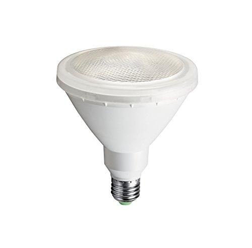 Aric 2980 LPE LED, Plastique, E27, 15 W, Blanc