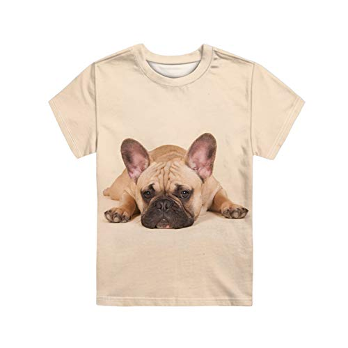 WELLFLYHOM French Bulldog Tee Shirt for Boys Girls Size 7-8 Cute Funny Dog Graphic Short Sleeve T-Shirt Tops for Teen Kids Junior Summer Clothing Blouses Active Pullover Outfits Shirt Beige