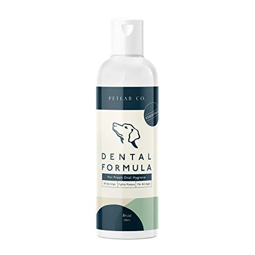 Petlab Co. Dental Formula Water Additive for Dogs | Targets Dog Plaque and Tartar Build-Up for Fresher Breath and Healthier Gums | Fresh Drinking Oral Hygiene Care (No Brush Required)