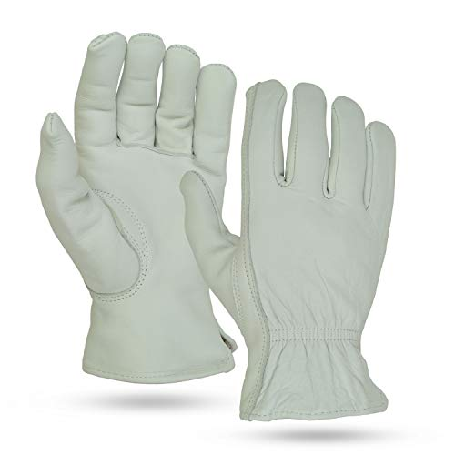 Illinois Glove Company 41 Buffalo Grain 3M Thinsulate Lined Glove, Palomino