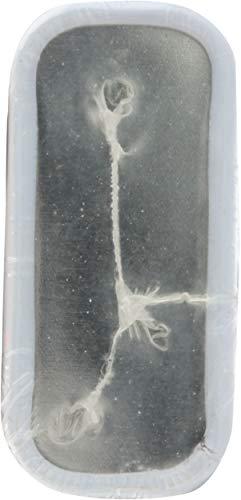 ヨーゲンフルーツ スムージータブレット ストロベリー 25g