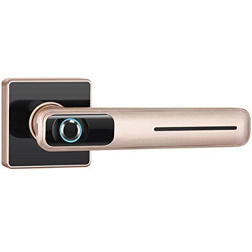 Cerradura biométrica de Seguridad para Huellas Dactilares: Cerradura electrónica Inteligente para Puerta Cerradura de Puerta antirrobo para Uso doméstico