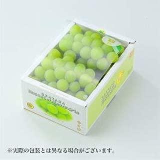 岡山県産 マスカット・オブ・アレキサンドリア 風のいたずら 訳あり 約500g×2房 葡萄 ぶどう ブドウ