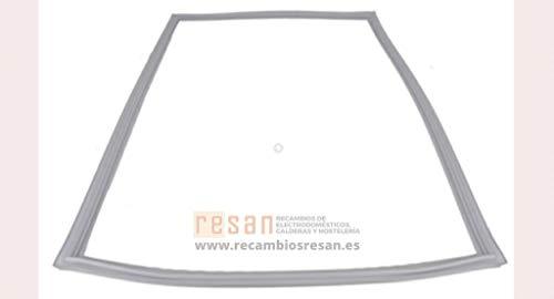 Indesit Kühlschrank Gefrierschrank Magnetic Polar Türdichtung (weiß)