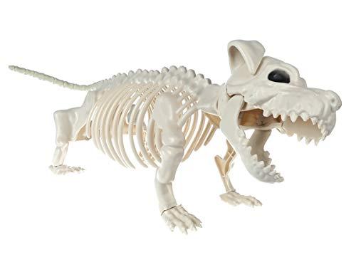 CoolChange Halloween Deko Hunde Skelett aus Kunststoff   Horror Hunde Gerippe   45cm