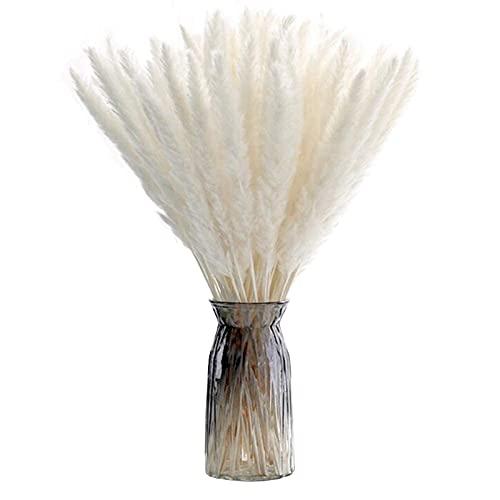 30 Piezas Pampas Secas, ZOLGINAH 60cm Decorativos Preservadas Flores Grass, Artificiales Decoracion Jarrones Decorativas...