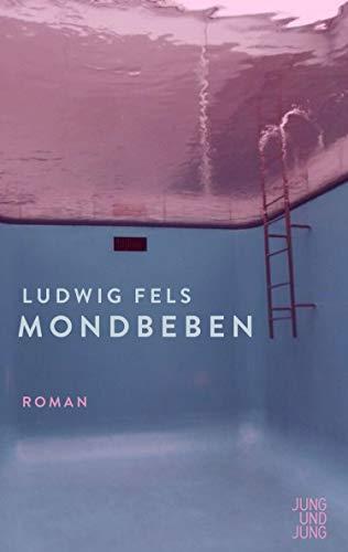 Buchseite und Rezensionen zu 'Mondbeben: Roman' von Ludwig Fels