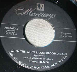 The Fiddler´s Boogie/When the liliacs bloom again (7