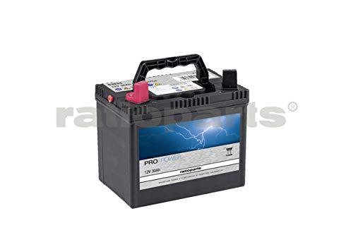 RATIOPARTS 101,735 Pro Power Starterbatterie 12V 30Ah 270A Ca