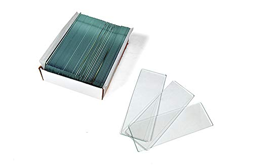 Levenhuk G50 Microscope Blank Slides to Make Your Own Specimen (50 pcs)