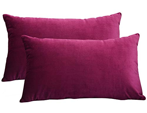 Lutanky Velvet Cushion Covers (Pack of 2) Lovely Rectangle Throw Pillow Cases Soft Solid Decorative Pillow Covers for Sofa Bedroom Car 12x20 Inch 30 x 50 cm (wine red, 2 pieces)