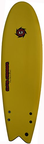 Liquid Shredder Fish Foam Surfboard
