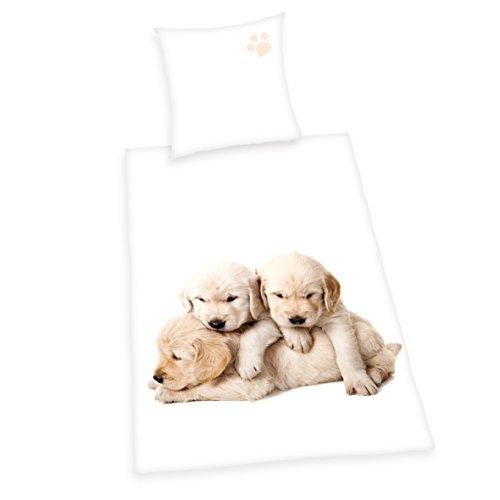 Herding Young Collectione Bettwäsche-Set, Hunde Wendemotiv, Bettbezug 135 x 200 cm, Kopfkissenbezug 80 x 80 cm, Baumwolle/Renforcé