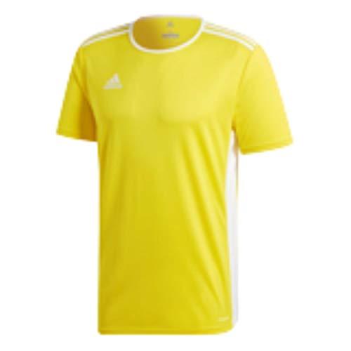 adidas Men's Entrada Jersey, Yellow/White, X-Small