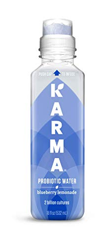 Karma Wellness Flavored Probiotic Water, Blueberry Lemonade, 18 Fl Oz (Pack of 12), Supports Digestive and Immune System Health, Low Calorie, 2 Billion Active Cultures
