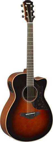 Yamaha 6 String Series AC1M Small Body Cutaway Acoustic-Electric Guitar-Mahogany, Tobacco Sunburst, Concert TBS