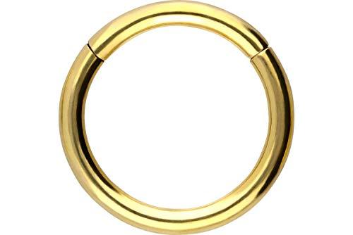 PIERCINGLINE 750er Gold Segmentring Clicker | 18 KARAT | Piercing Ring Nase Septum Ohr Helix | Farb & Größenauswahl