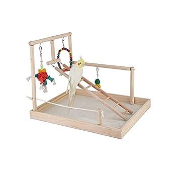 YEZIN Oiseau en Bois perchoir de Perche Perroquet Plate-Forme de Jeu Exercice Gym Gym playder échelle Interactive Jouets Fournitures d'oiseaux (Color : Type3(L))