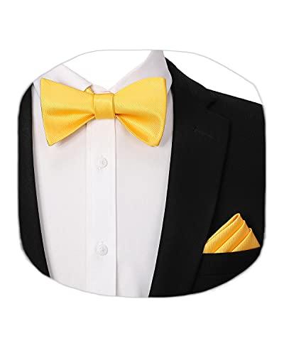 HISDERN Set Papillon Uomo e fazzoletto da taschino,giallo Cravatta a Farfalla e Accessori per Fazzoletti per Feste di Matrimonio
