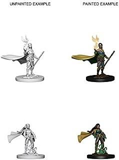 D&d Nolzur's Marvelous Unpainted Minis: Elf Female Druid