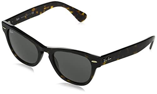 Ray-Ban Gafas de Sol LARAMIE RB 2201 Havana/Dark Grey 54/20/145 unisex