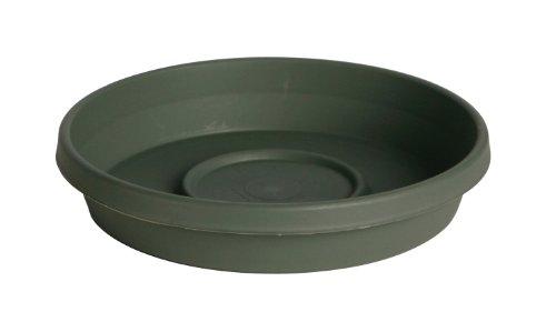"Bloem Terra Plant Saucer Tray 8"" Living Green"
