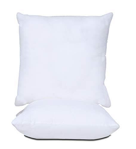 AAVNI HOMES Ultra Soft Premium Quality Polyester Throw Pillow Insert Cushion Filler Stuffer for Bed, Couch, Sofa, Car (Set of 2, 16 x 16 inches)