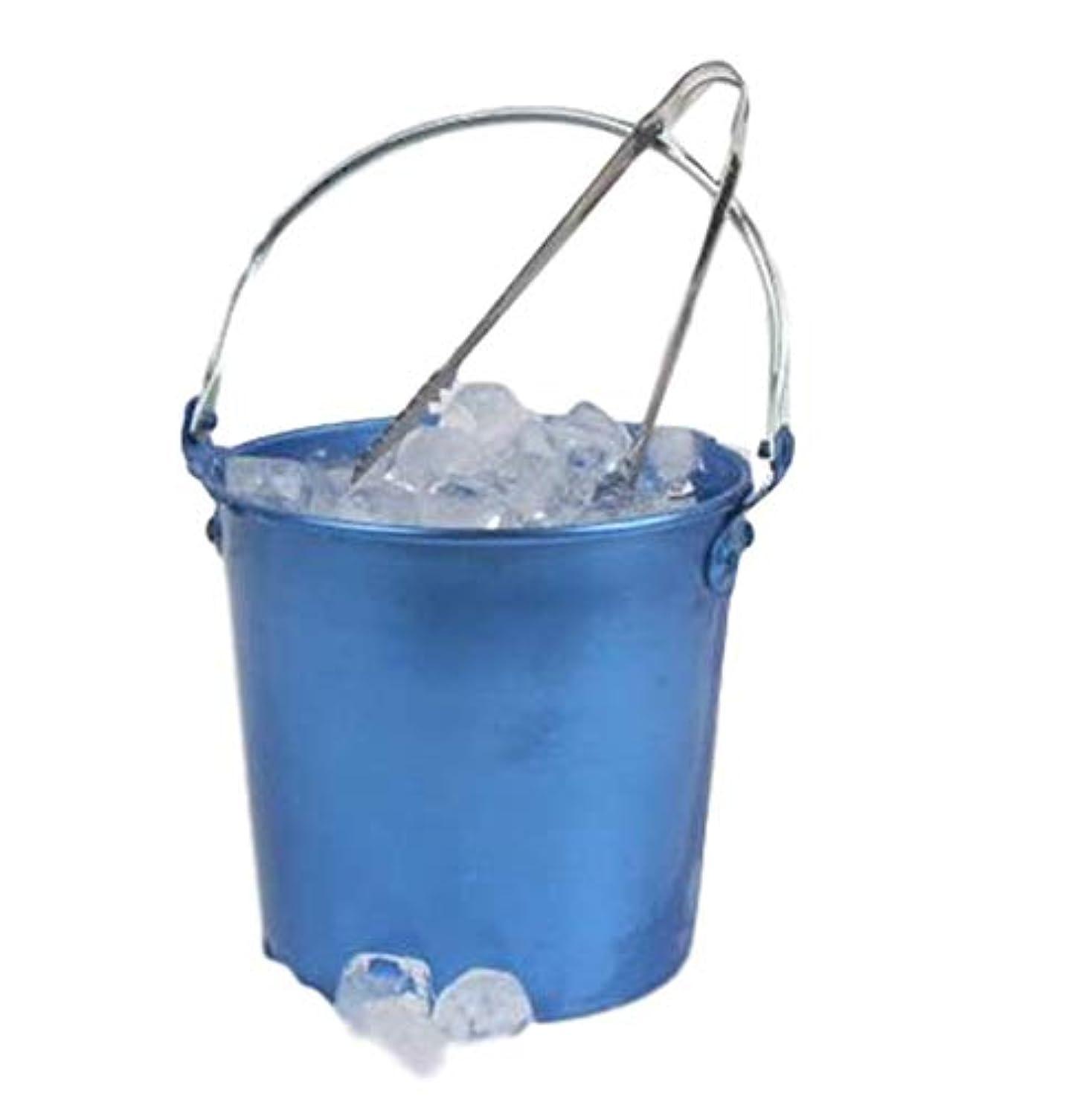 疑い者ポスター憂鬱な(グードコ) アイスペール 冷却 17.5L KTV バー カフェ アイスバケット アイストング 氷バケツ 厚手 手提げ便利 アイスバケツ アイスバケット 氷シャベル ワインクーラー カクテル シャンパン (ブルー)