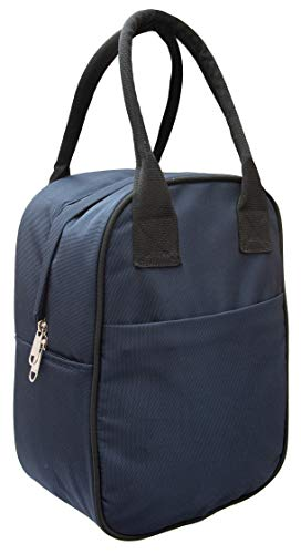 DEVU PARBAT Insulated Lunch Bag for Office Men, Women & Kids || Carry Bag for Lunch Box || Tiffin Bags for Travel, Picnic, Work (Blue)