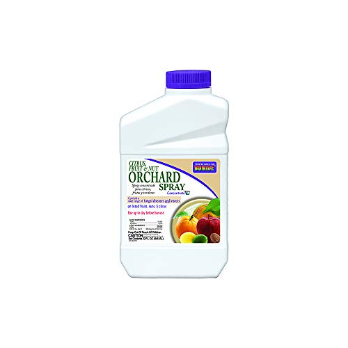 The AMES Companies,Inc 037321002185 Bonide 218 Concentrate Citrus Spray, 32 Fl Oz, LAWNGARD
