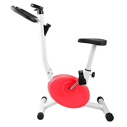 Review Of LMZZGAOYANQING Home Exercise Machines Children's Dynamic Bike Spinning Fitness Bicycle Fit...