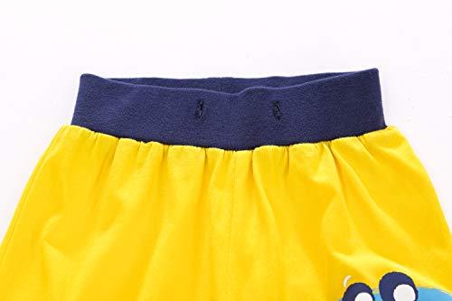YJWFHPU Boys Dinosaur Shorts Cotton Yellow Blue Trunks Boardshorts for Little Boys 2-7 Years Elastic Waistband