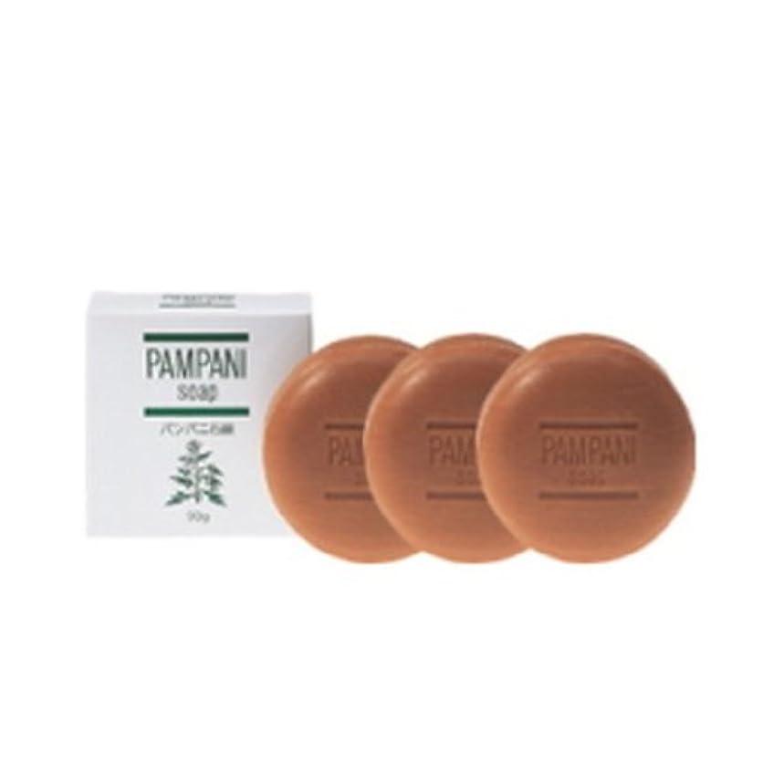 不条理静かな急行するパンパニ(PAMPANI) せっけん 90g×3個組