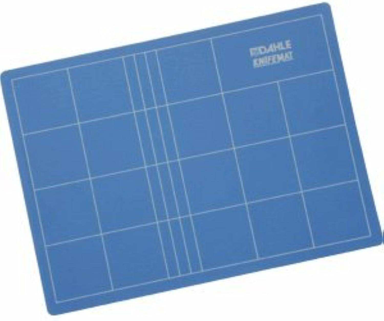 Dahle Schneidematte 60x90cm blau B0050CFQTI  | Spielzeugwelt, fröhlicher fröhlicher fröhlicher Ozean  6e352a