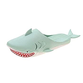 Four Seasons y ,Shark slippers,Lobster Slippers Unisex Sandals bass Slides Slippers Swimming Pool Beach and Shower Shoes Men and Women  5.5 Green + Shark Slippers numeric_5_point_5