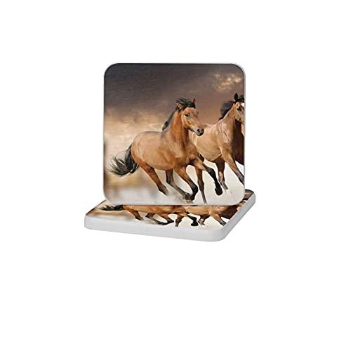 2 posavasos cuadrados de diatomita para decoración del hogar, alfombrillas antideslizantes para bebidas, soporte de cepillo de dientes, bandeja de jabón para baño y cocina, diseño de caballos