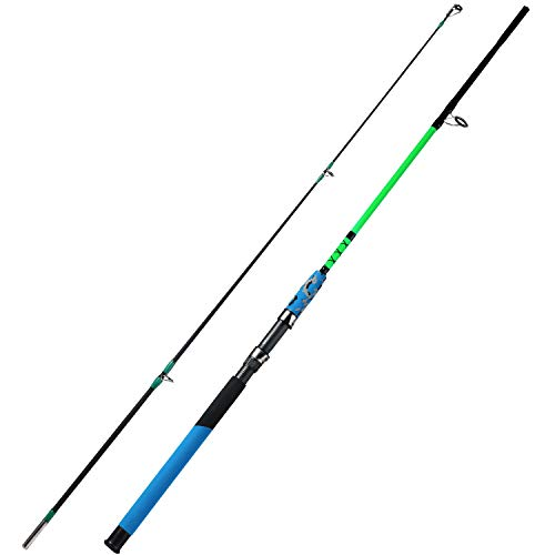 Top 10 best selling list for 8 ft fishing rod