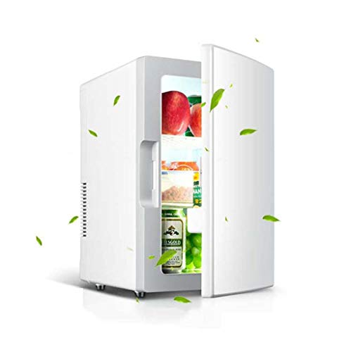 Mini Fridge 18L Skincare Fridge - with Temperature Control - AC/12V DC Portable Thermoelectric Cooler and Warmer for Bedroom, Cosmetics, Medications,Make Up, Home and Travel Best Gift