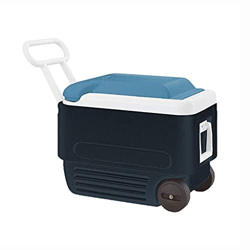 ROM Mini refrigerador portátil y Enfriador de Botellas de Vino con Carrito, Caja de Picnic con Ruedas para camión, Oficina en casa, Viaje, Camping