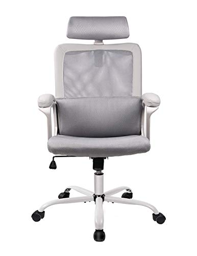 Our #1 Pick is the Smugdesk 5579 Ergonomic Office Chair - Best Office Chair Under $300