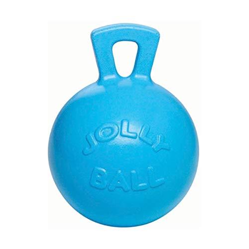 JOLLY 0788169041095 Ballon de Cheval Bleu Clair avec Parfum Fraise des forêts