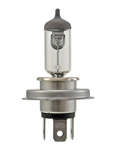 HELLA HS1 Standard Halogen Bulb, 12 V, 35/35W