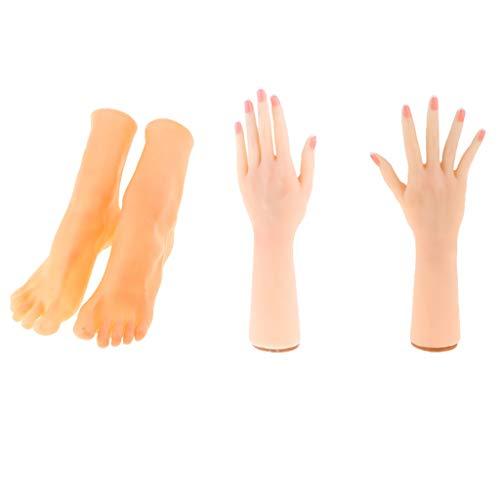 SDENSHI 2 Paar Weibliche Hand Füße Schaufensterpuppe Für Kettenhandschuhe Sandale Schuhsocke Display