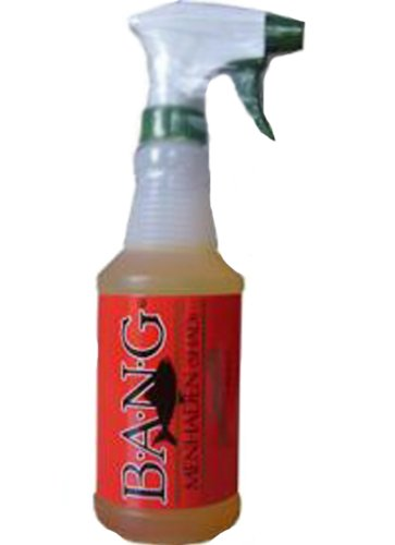 Bass Assassin Bang Fish Attractant Trigger Spray, Shad, 16 Oz.